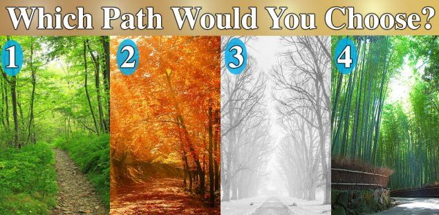 An image with 4 different forest paths. Each in different season.